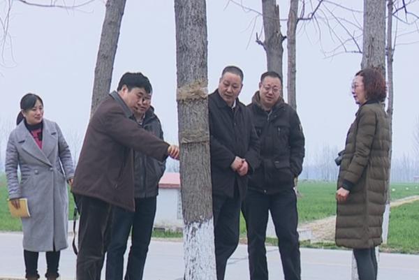 省林业厅专家到西平县调研指导春季林木病虫害防治工作