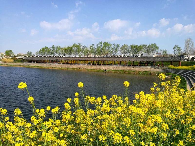 今日练江河——驻马店一道亮丽的风景线