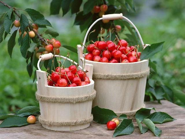 夏季多吃樱桃能补铁