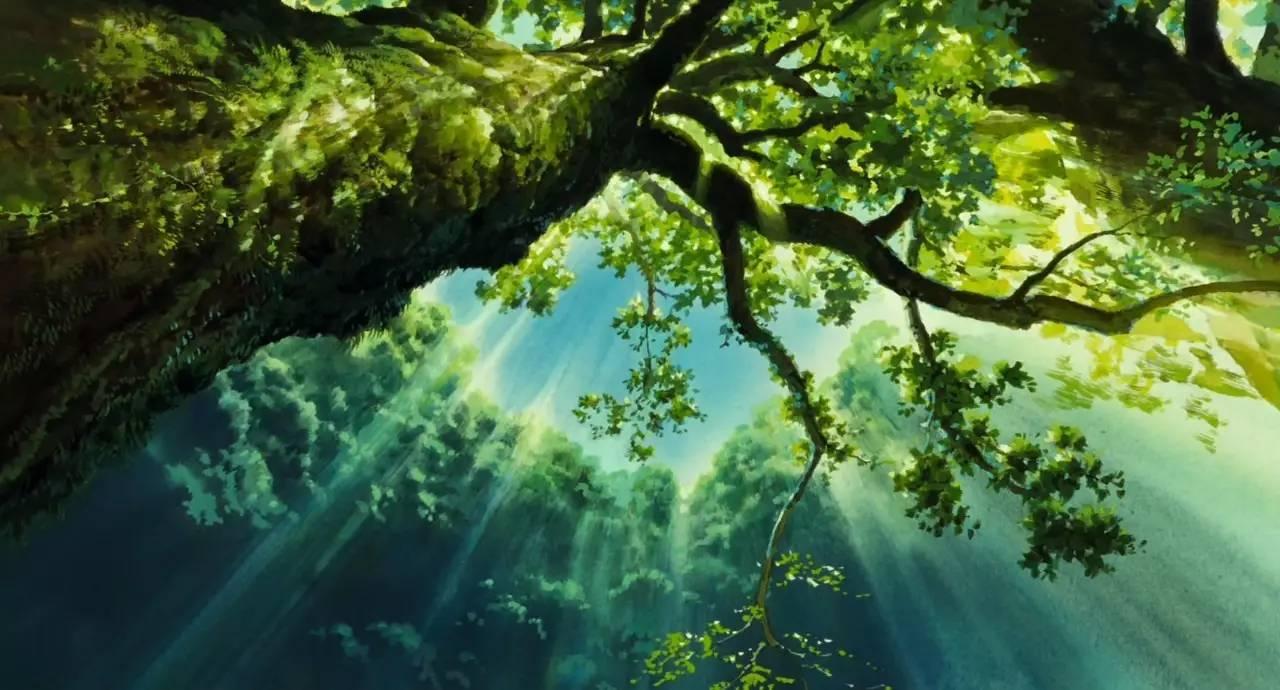 宫崎骏经典动画片《幽灵公主》的若干场景带来了灵感