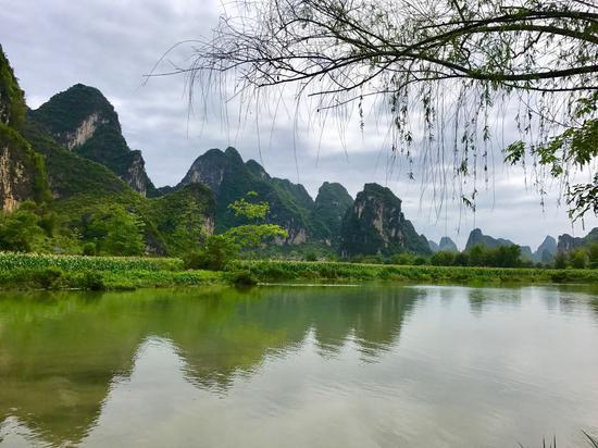 图片来源:新浪微博@莫果蕾 景区因《花千骨》在此取景而受到游客的追捧,在这里,游客会忘记了时间的流逝,犹如进入无人之境。是居家旅游的好去处。这里的中国式田园美景吸引了无数中外游客,被誉为中越边境山水画廊、中国隐者之居。