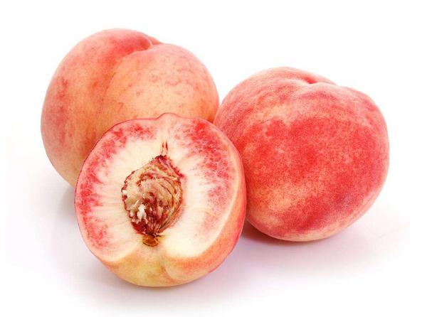 桃子果实结构图