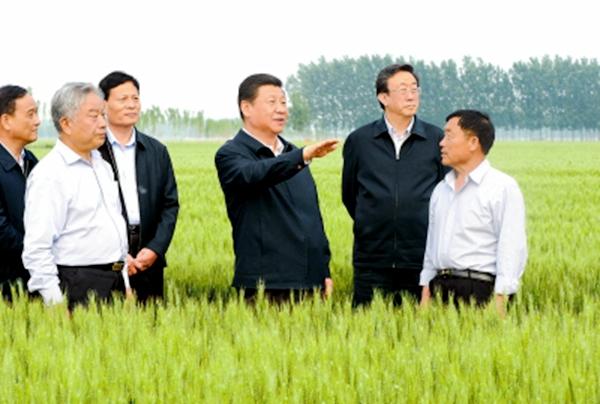 【治国理政新实践】《牢记嘱托 出彩中原》系列述评之一春天的嘱托
