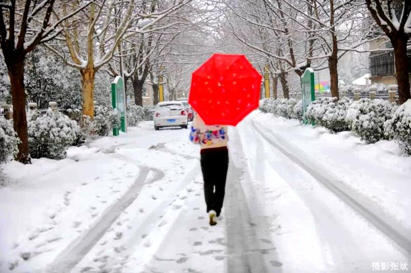 驻马店迎来2018年第一场雪 网友发来的雪景美爆了!