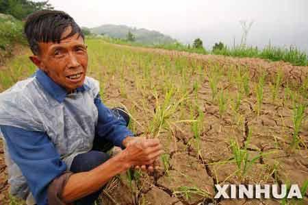 去年全球极端气候造成3300亿美元损失