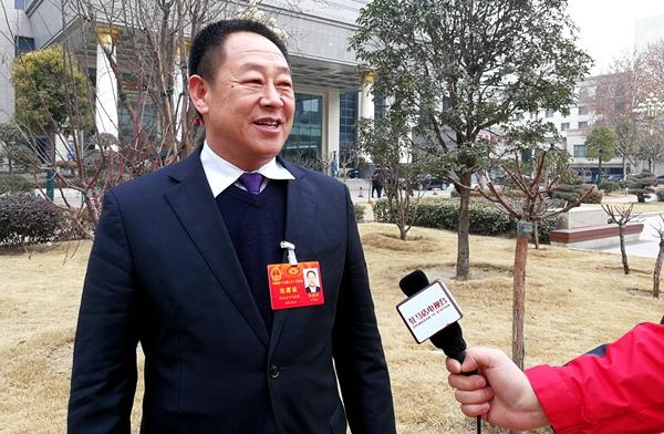 陈润儿所做政府工作报告引起驻马店代表团强烈反响