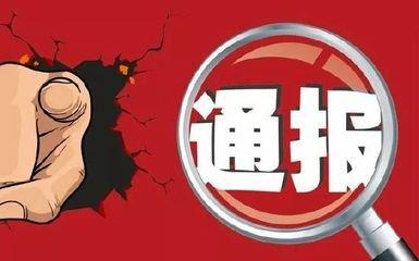 驿城区政府、汝南县政府被通报批评!来看咋回事?