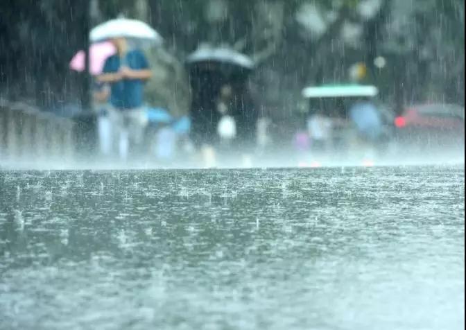 中雨、大雨!驻马店下周又要下雨?更可怕的是…