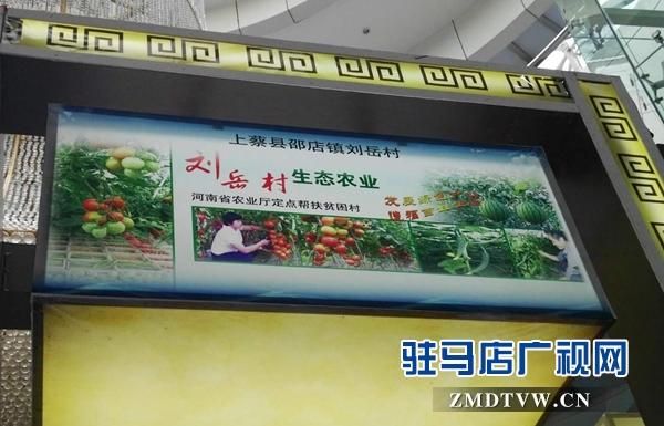 上蔡邵店特色种植农产品首次亮相中国农加工洽谈会