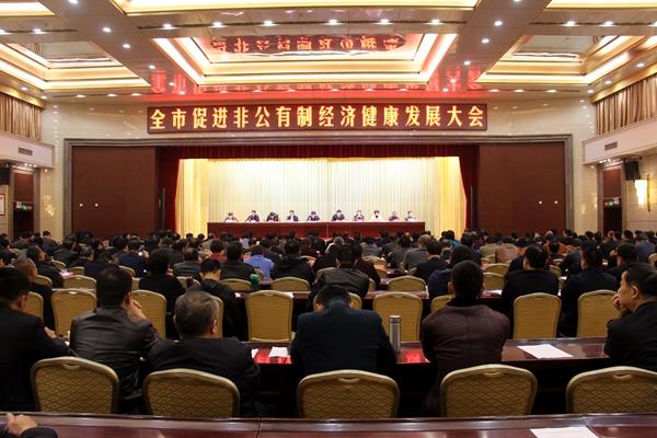 驻马店市促进非公有制经济健康发展大会召开