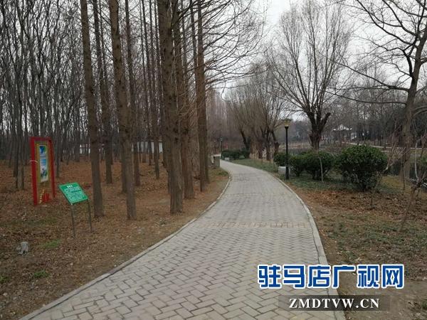 改造后的置地公园焕然一新