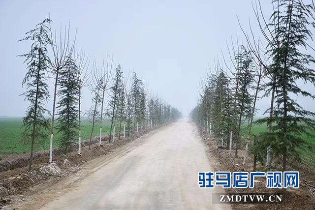 上蔡县多措并举推进国土绿化提速行动