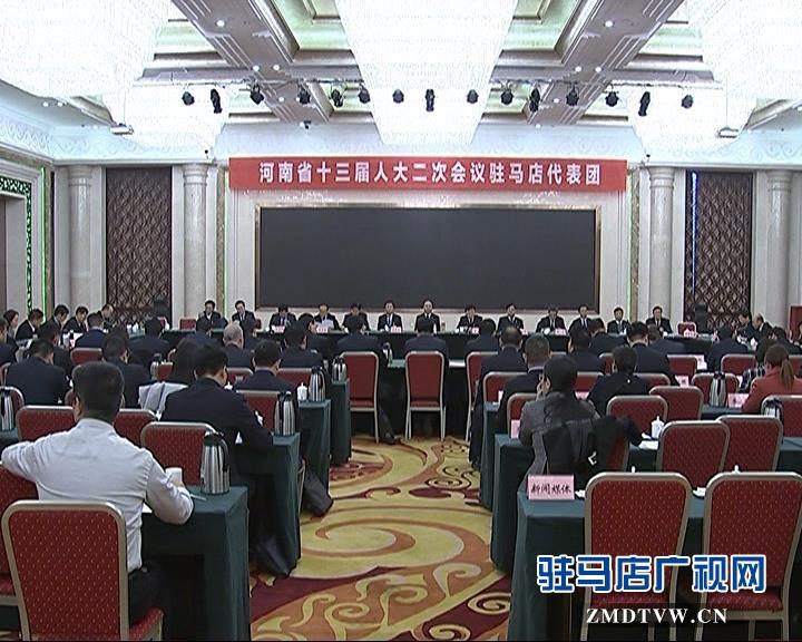 河南省十三届人大二次会议驻马店代表团成立