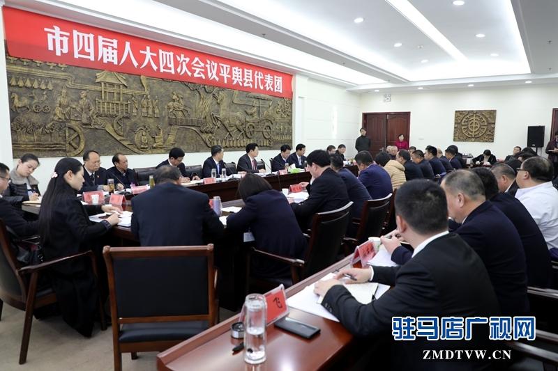 朱是西参加平舆代表团的审议政府工作报告,聆听代表发言。