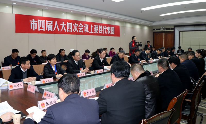 陈星、朱是西分别参加上蔡平舆代表团的分组审议