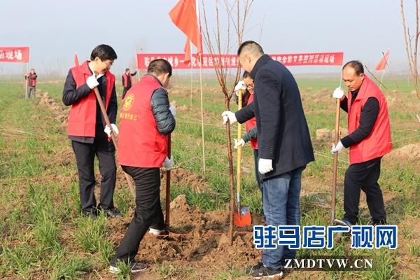驻马店市城乡一体化示范区干部职开展春季全民义务植树活动