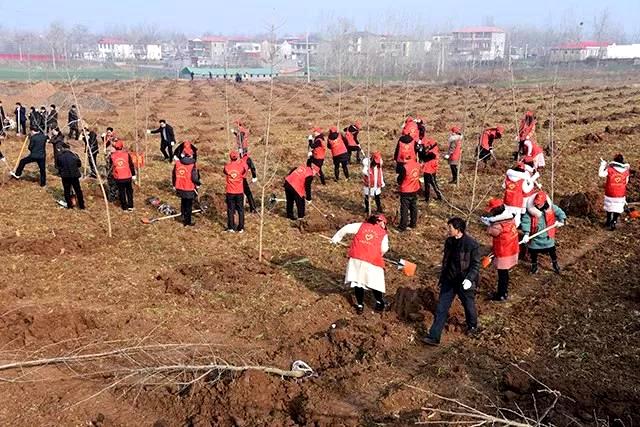 上蔡县开展春季义务植树活动