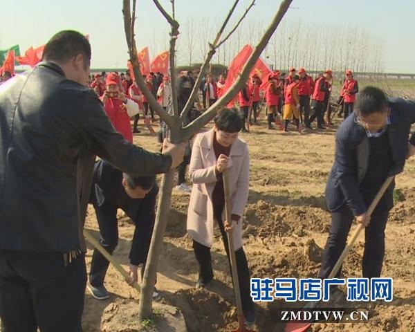 西平县举行大型植树活动暨青年林揭牌仪式