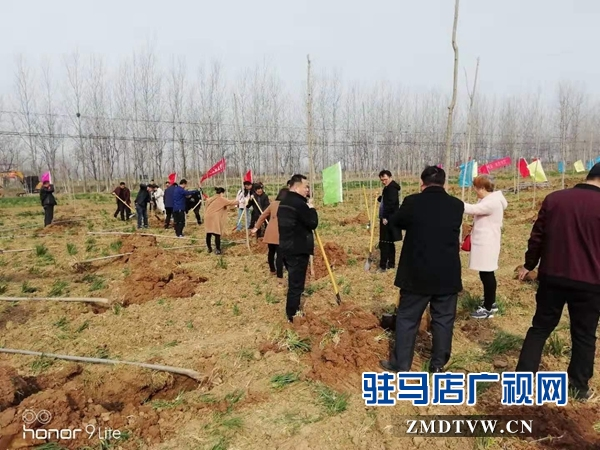 汝南县三桥镇党员干部参加义务植树活动