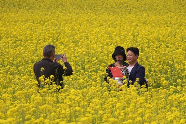 驻马店鲁湾小镇首届千亩油菜花文化季开幕