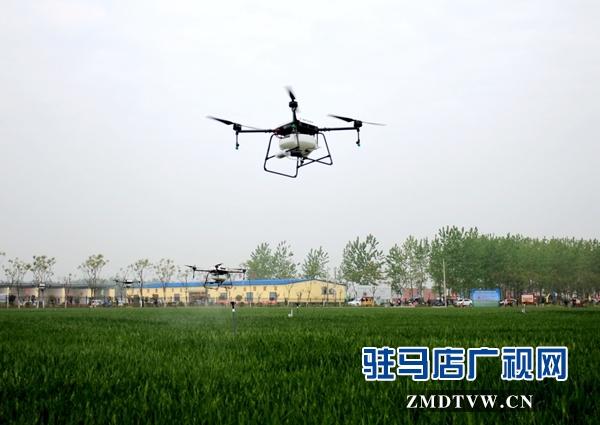 正阳县对小麦重大病虫害进行统防统治