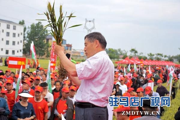 正阳千余农民麦田选秀