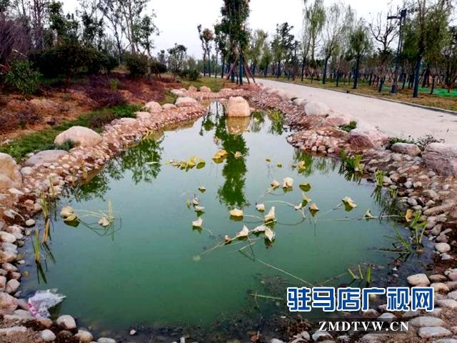 练江河主题公园景色美如画