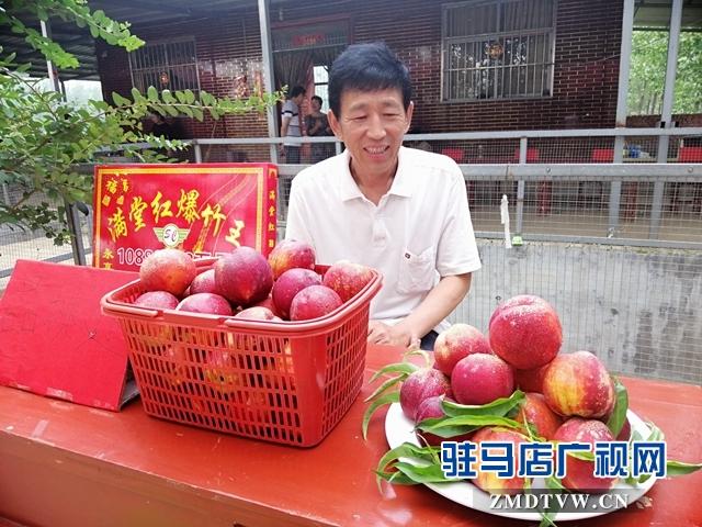 小油桃改变了贫困户生活