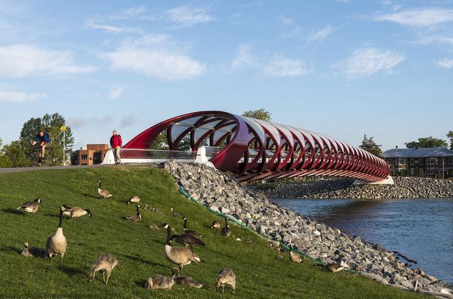 这座桥不足200米,却用了几个亿才修建好,最后汽车还无法通行