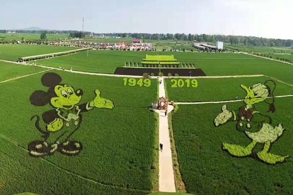确山县留庄镇稻田公园被正式授予国家3A级景区