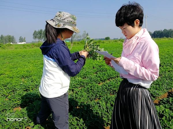 """正阳县气象局开展灾情调查服务""""秋管"""""""