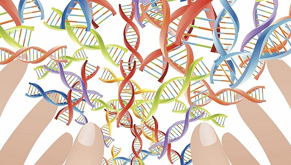 同性恋不完全由基因决定?新研究称受多种遗传因素和环境影响
