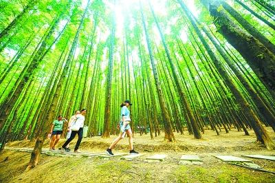 生态之美装扮美丽中国