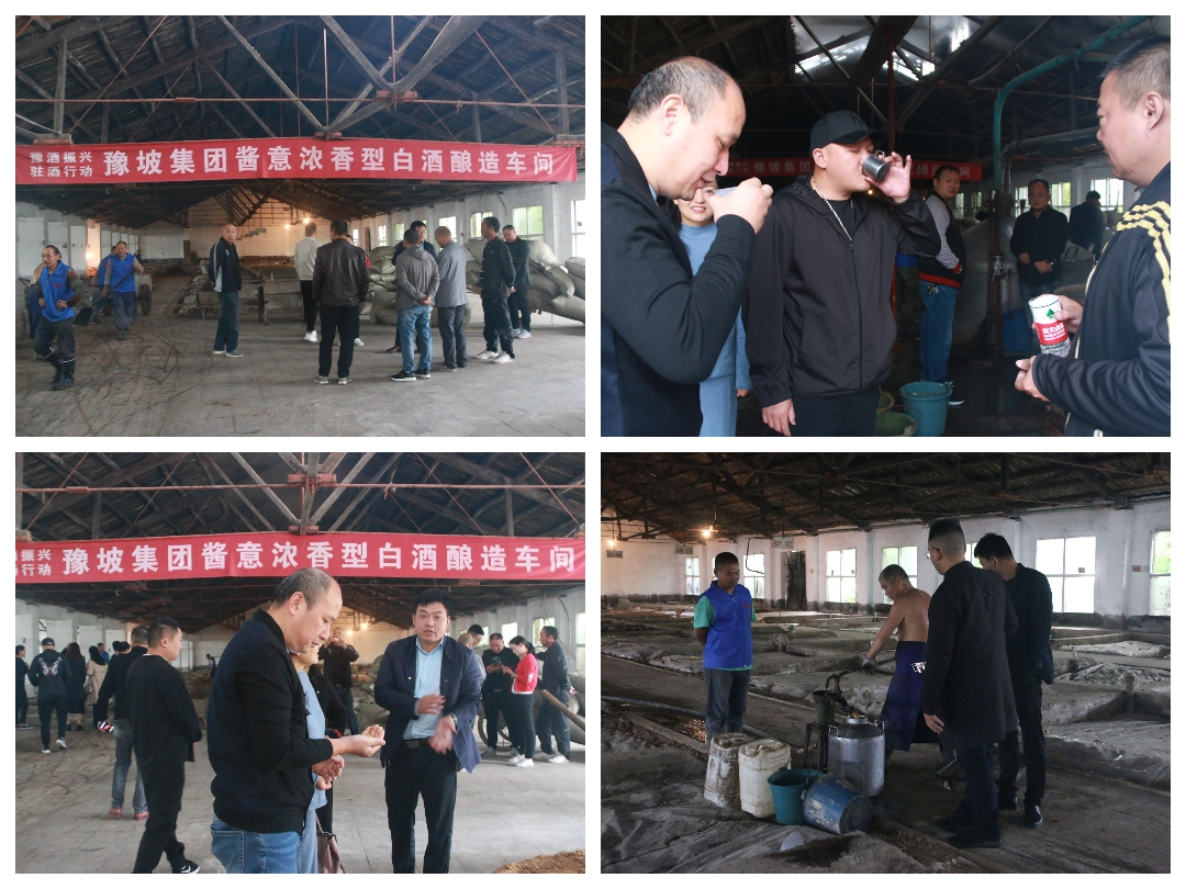 """近50名企业家走进豫坡集团观摩考察并在首届中原种酒文化节到来之际率先""""抢酒"""""""