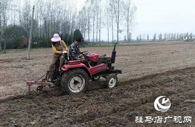 正阳:农民互帮队解决村民种地难题