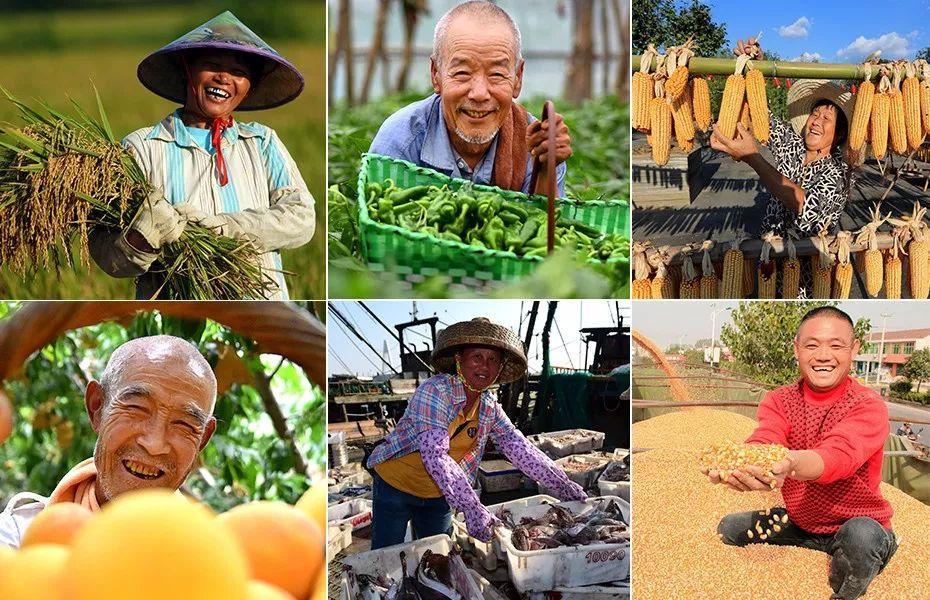 """世界粮食日:请做一个有""""粮心""""的人"""