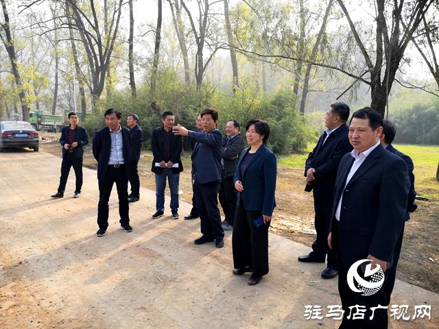 省自然资源厅巡视员李军到驿城区调研指导工作