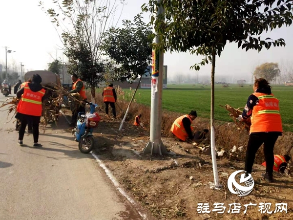 新蔡县杨庄户乡打响环境治理攻坚战