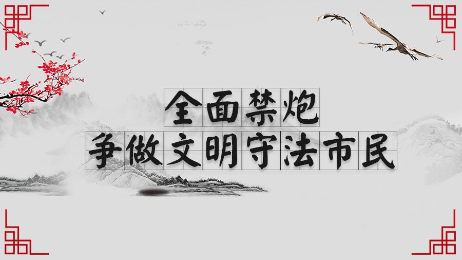 驿城区人民政府发布关于划定驿城区烟花爆竹禁放范围的通告