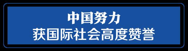 """命运与共,中国向世界展现战""""疫""""中的大国担当"""
