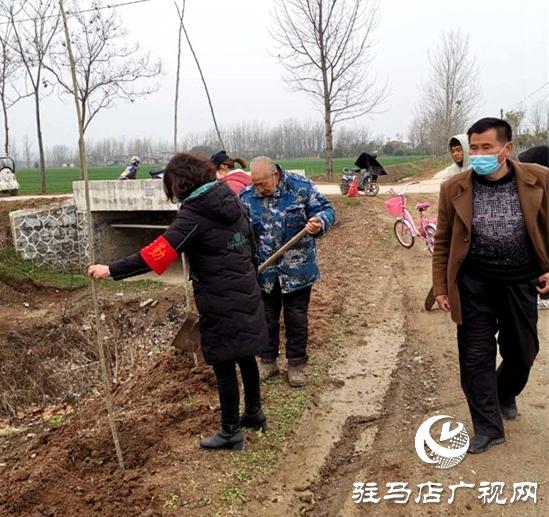 汝南县三桥镇抢抓时机忙植树