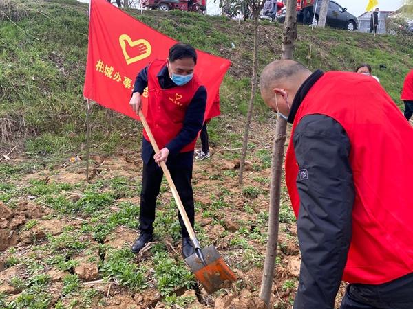 西平县柏城街道办事处组织开展义务植树活动