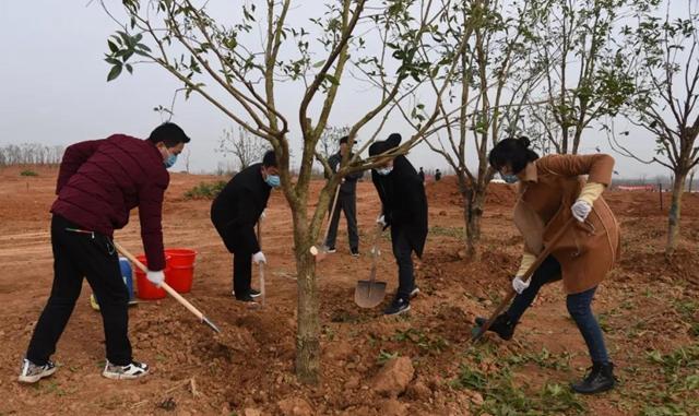 上蔡县四大班子领导参加义务植树活动