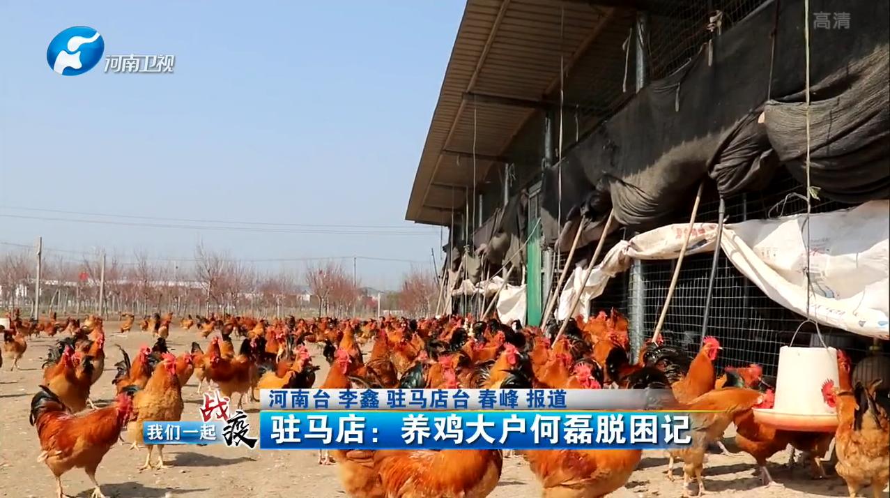 【河南卫视:战役我们在一起】驻马店:养鸡大户何磊脱困记