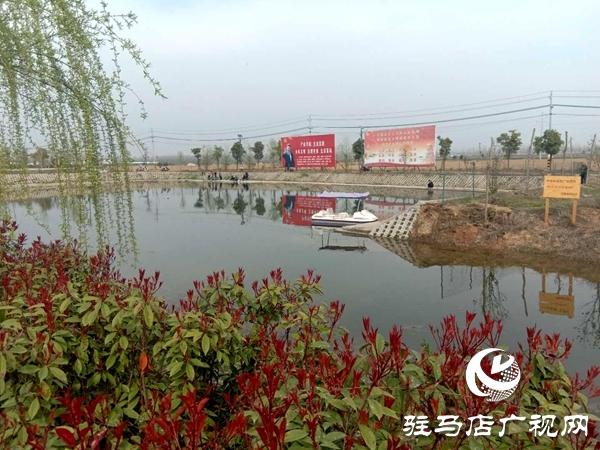 上蔡县黄埠镇小王营村迈步在乡村振兴的大道上