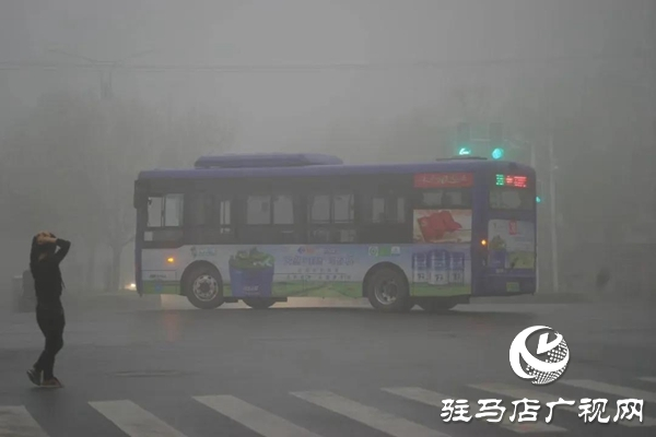 浓雾来袭 省内19条高速实施交通管制
