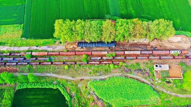 运行区间为驻马店站到平舆站,曾经是河南省地方窄轨列车之一。