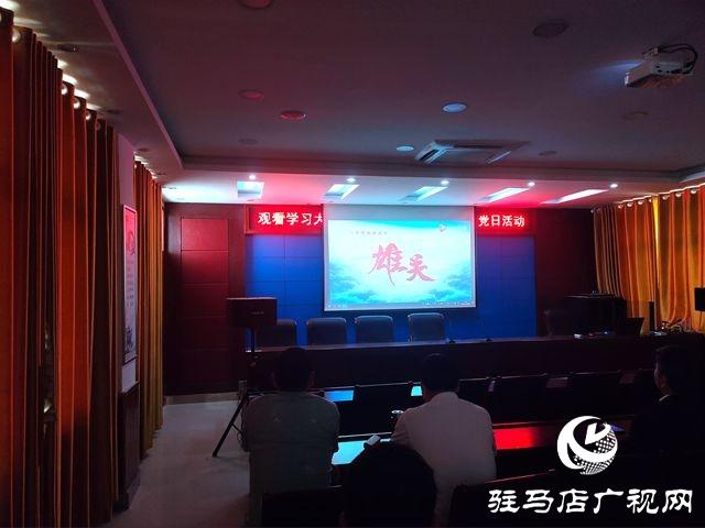 确山县开展主题党日活动