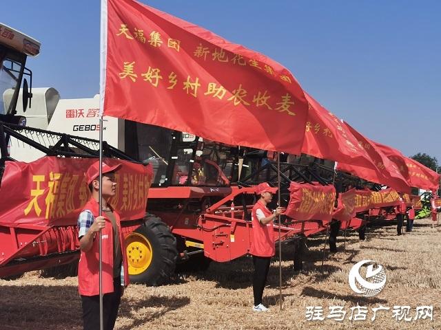 天福、新地花生集团助农收麦忙 三夏时节确保颗粒归仓