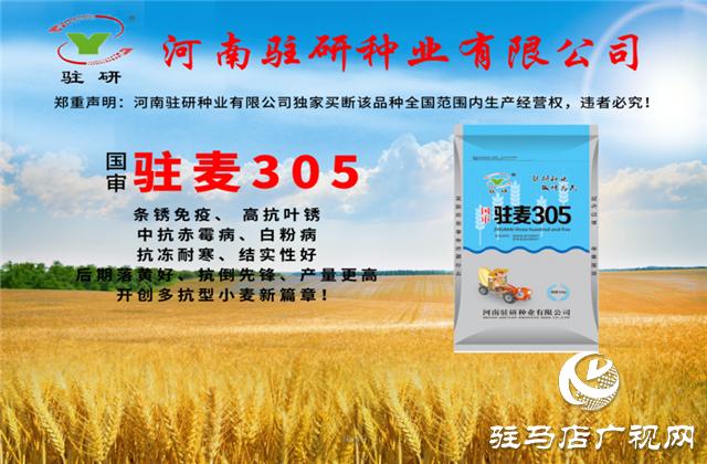 驻研种业2020年小麦种子推介及政策发布会